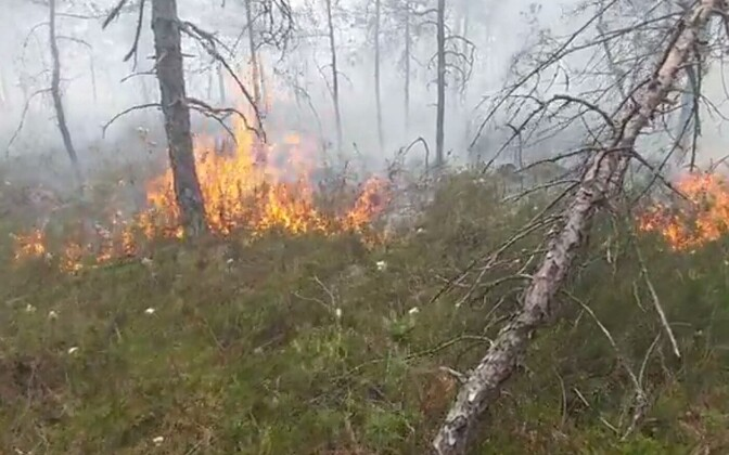 Video still from the scene of the Rääma bog fire. 21 June, 2018.