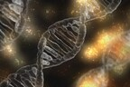 Tartu teadlased näitasid, et haiguste geneetilise riski hindamisel mängib olulist rolli inimese päritolu.
