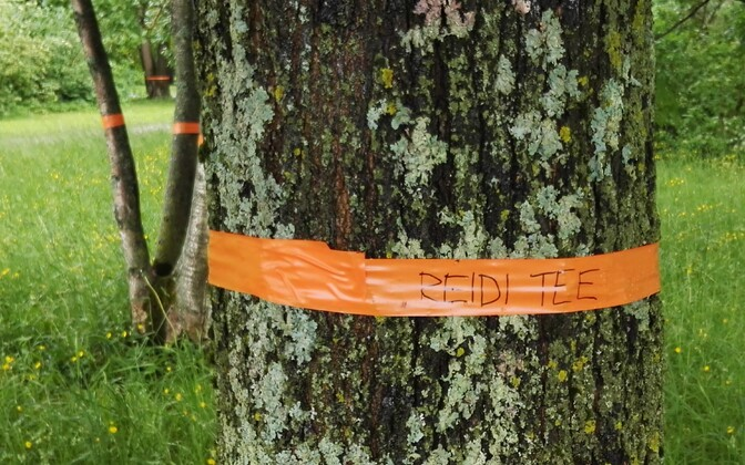 Environmentalists' fight against the development of Reidi Road in Central Tallinn.