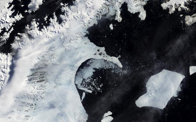 От Антарктиды откололся гигантский айсберг. Снимки со спутника.