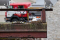 Kajakaema haub Kultuurikatla pesas teist poega