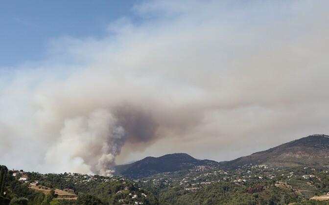 Prantsusmaal põleb 800 hektarit metsa ja kulu.
