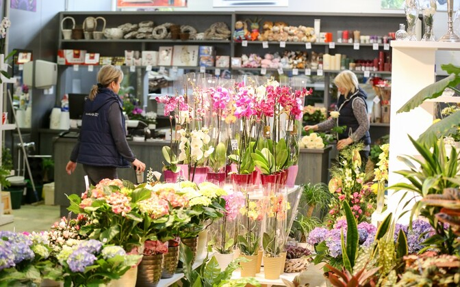 Florist in Estonia. Florists and other stores specializing in plants experienced turnover growth in June.