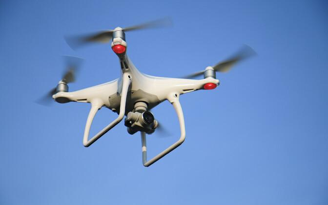 Droonide kasutamine aitab koguda täpsemat ornitoloogilist teavet.