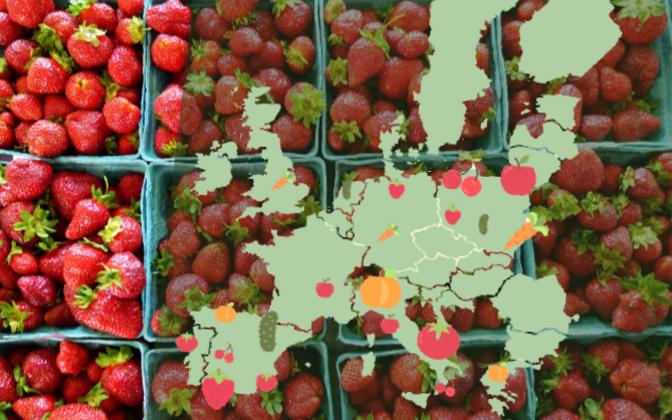 Poola on tubli õunte, kirsside ja porgandite kasvataja, Hispaania aga toodab enim maasikaid ja kurke. Eesti suurte tootjate sekka ei jõua.