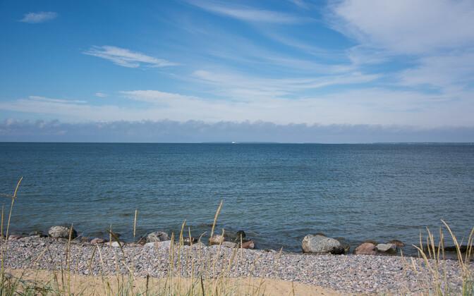 Волны, вызванные Viking FSTR, на пляже Пальяссааре.