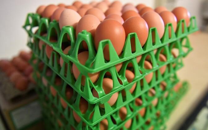 Зараженные фипронилом яйца обнаружены в 15 странах ЕС, а также в Словакии и Гонконге.