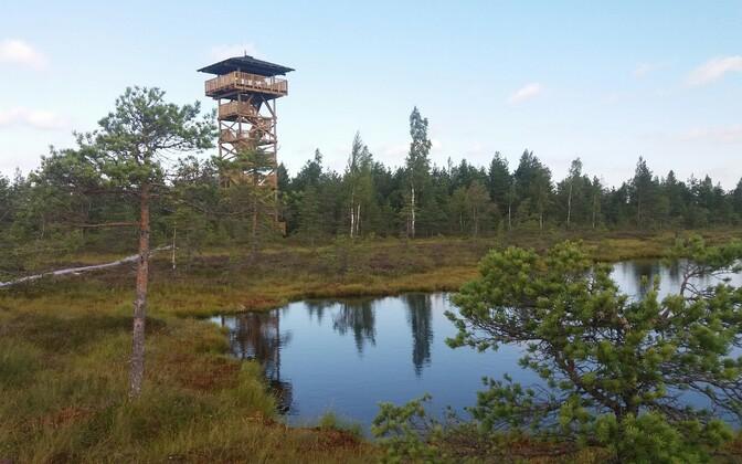 Mukri raba uus vaatetorn on külastajatele avatud.