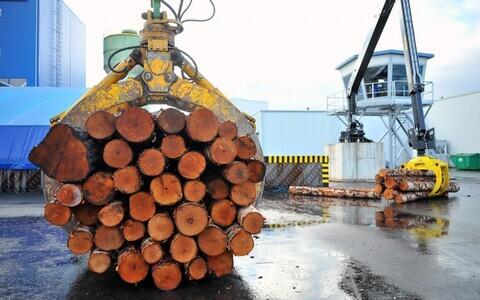 На фанерный завод в Пярну будут искать людей в Ида-Вирумаа.