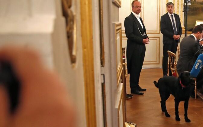 Prantsuse presidendipaar adopteeris koera
