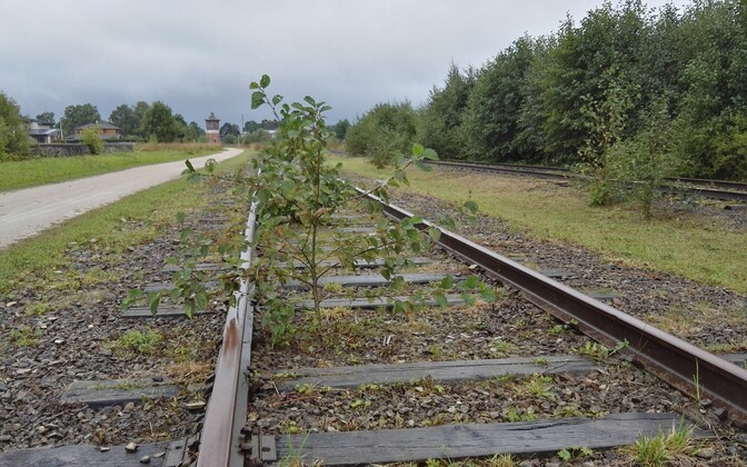 The government's goal is to restore rail service to Haapsalu.