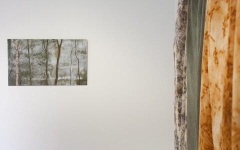 Выставка Юлле Саатмяэ