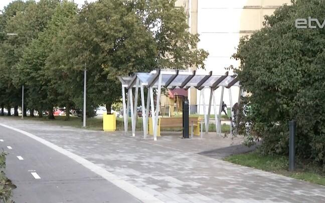 Велосипедно-пешеходная дорожка в Тарту