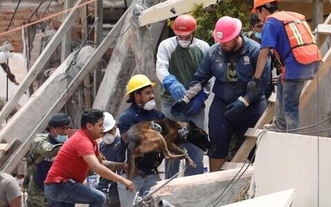 В Мексике продолжают разгребать завалы.
