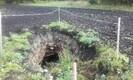 Auk Sonda vallas Varinurme külas.
