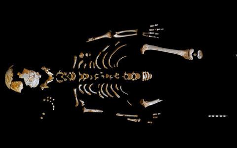 Neandertallase El Sidrón J1 säilmed.