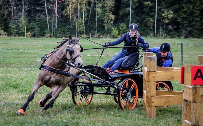Pille-Riin Reinaus ja gruum Priit Reinaus hobusega Radar