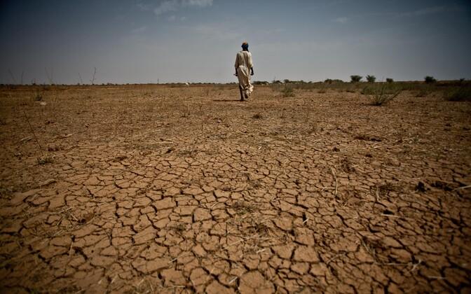 Kui Eestis saab üha suuremaks probleemiks erosiooni tekitav sademeterohkus, siis paljudes teistes piirkondades on probleemiks kõrbestumine.