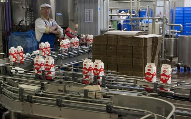 Piima tootmine Teres