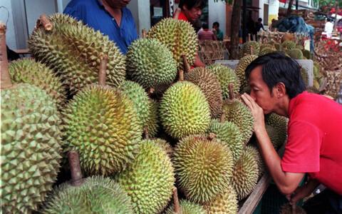 Durian tekitab vastakaid arvamusi.