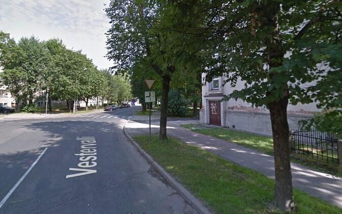 Слева на фотографии нарвское общежитие, справа Эстонская гимназия, где расположен избирательный участок №6.
