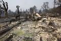 Калифорния после пожаров.