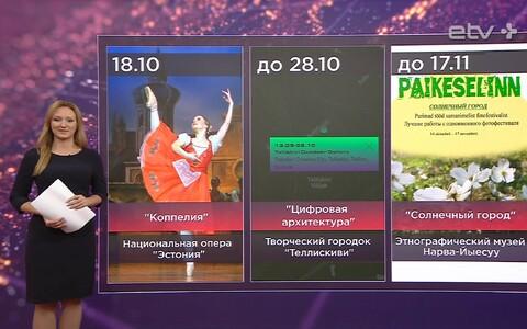 Маргарита Мясникова выбрала все самое интересное