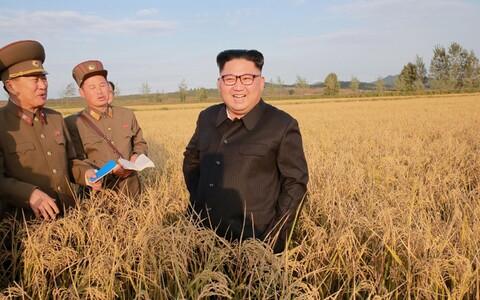 Põhja-Korea liider Kim Jong-un koos nõunikega põllumajanduse hetkeseisuga tutvumas.