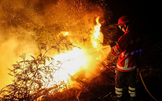 Пожар в Португалии.