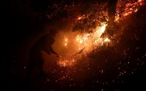 Пожар в Испании.