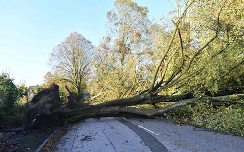 Torm Ophelia tagajärg Corki maakonnas.