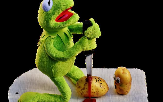 Konn Kermit on üks paljudest kuulsatest kahepaiksetest inspireeritud tegelaskujudest.