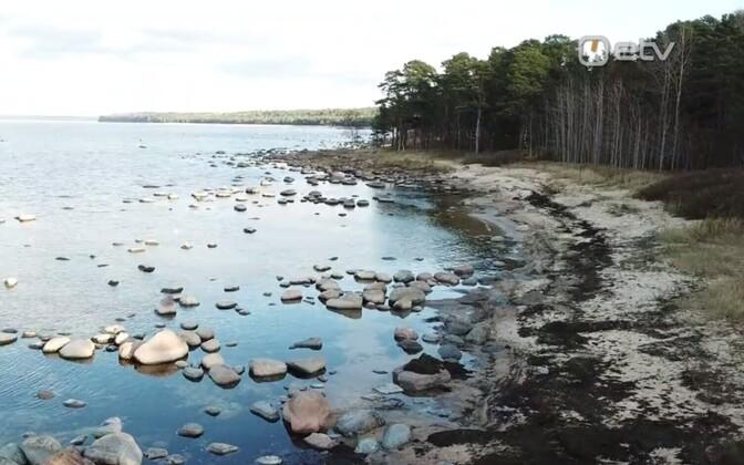 Coast in Lohusalu.