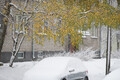 esimene lumi