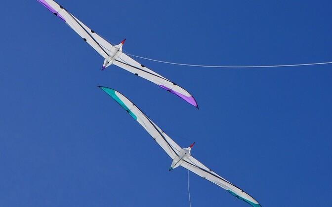 Albatrossidest inspireeritud kuuemeetrise siruulatusega tuulelohed.