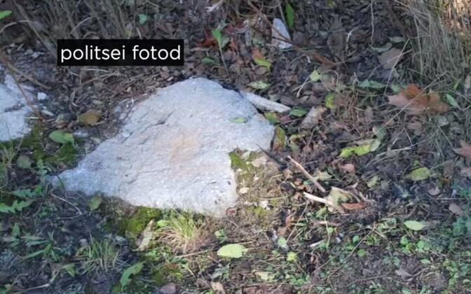 Metsast leitud fentanüül.