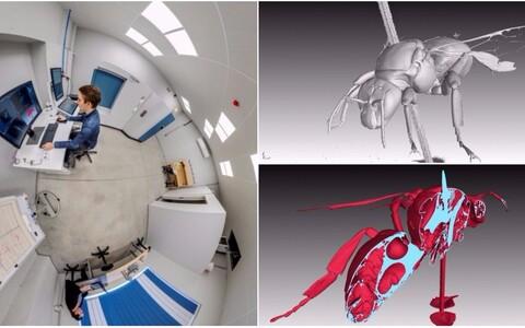 Maaülikooli uus kompuutertomograaf võimaldab uurida mistahes materjalist objekte.