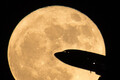 Луна казалась на 14% больше и на 30% ярче.