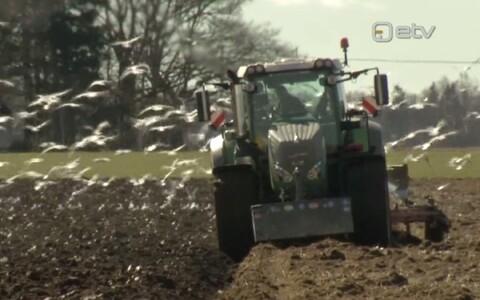 Taimekaitsevahendite kasutamine kasvab.