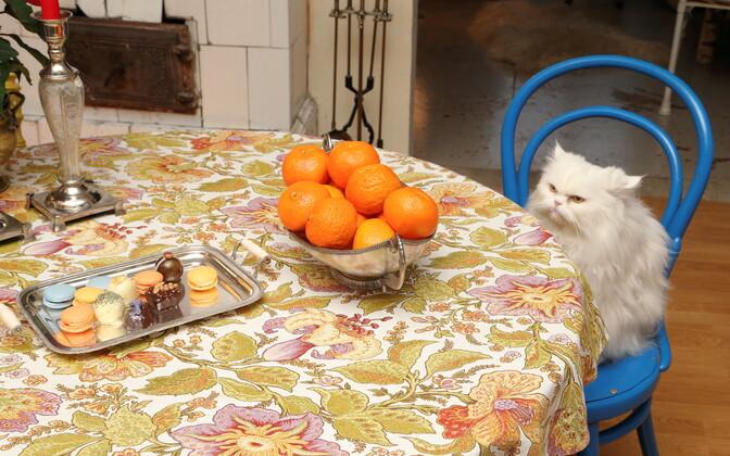 Detsembri jooksul sööb keskmine eestlane ära kolm kilo mandariine.