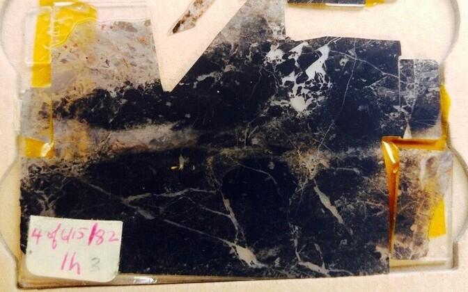 Teadlased uurisid ligi 3,5 miljardi aasta vanuseid fossiile.