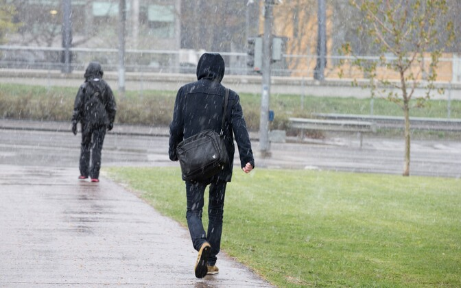 Во многих местах дождь и мокрый снег.