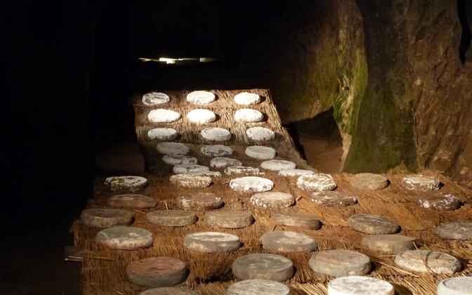Saint-Nectaire'i juust keldris valmimas.