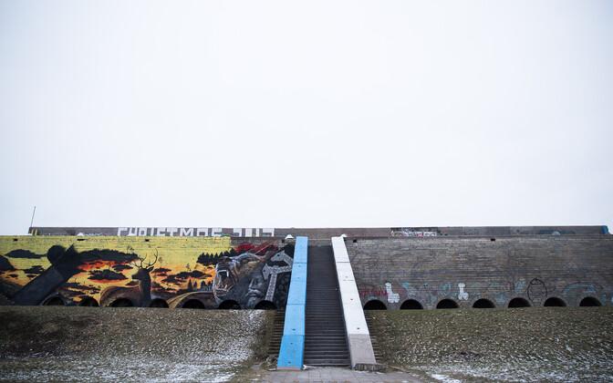 Таллиннский горхолл, январь 2018 года.