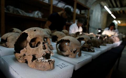 Asteekide pealinna Tenochtitlani lähistelt päevavalgele tulnud koljud.
