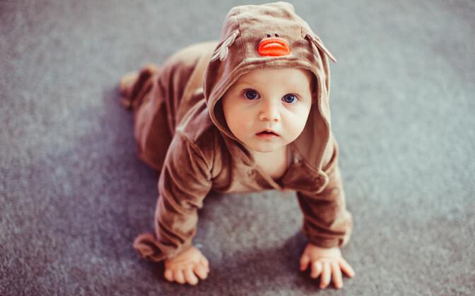 Kõik proovid kokku võttes leidus kodus hoitavate laste veres kortisooli keskmiselt 30 protsenti rohkem.