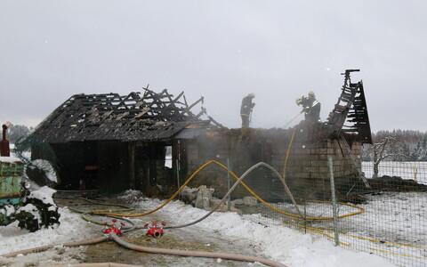 При пожаре погибли 5-6 домашних кур.