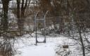 Забор в Ивангороде закрывает доступ к реке рыбакам.