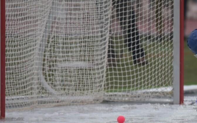 Хоккей с мячом - игра, в которой сборная Эстонии довольна сильна.