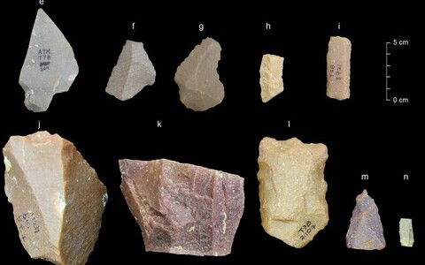 Mõned Attirampakkamist leitud tööriistadest.